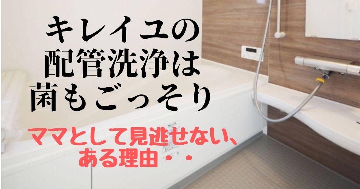 湯船の背景と「キレイユの配管洗浄」の文字